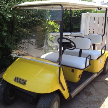 EZ-GO TE-5PDS 48V, 4 seats