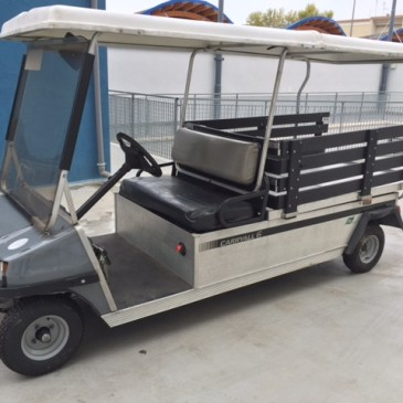 CLUB CAR DS carryall 2 seats, anno 2005