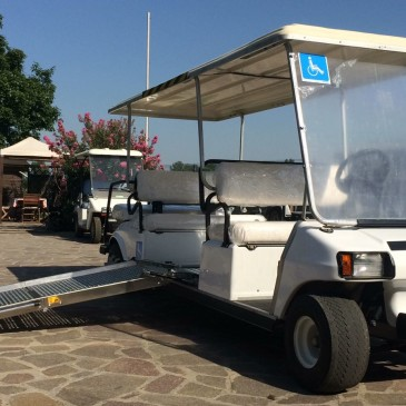 Clubcar Villager per disabili