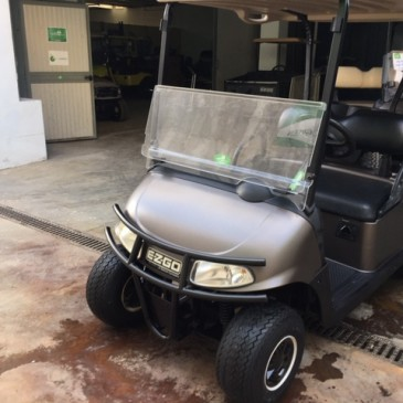 EZGO RXV customised